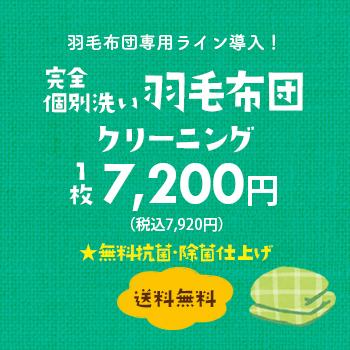 羽毛布団専用ライン導入!完全個別洗い 羽毛布団クリーニング 1枚6,800円(税別)【送料無料】